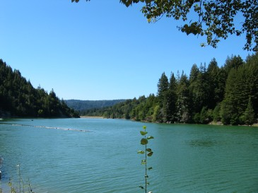 Loch Lomond is in the Lompico neighborhood of Felton, in the Santa Cruz Mountains, CA