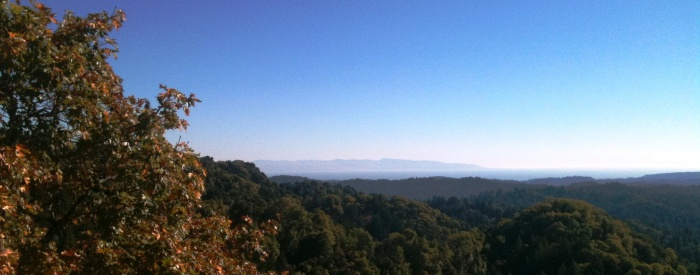 Bear Creek Road November 2012