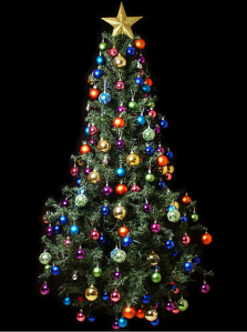 Christmas_Tree_by Jorge Barrios_2013-11-26