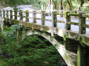 Building a Bridge to Your Future