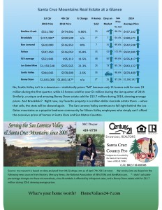SLV SV LGM infographic 1st qtr 2015