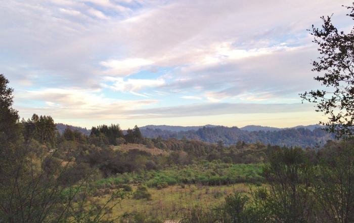 Laurel road near Hwy 17 in Los Gatos edited.jpg